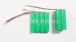 NiMH AAA 4.8V 900mAh Battery Pack